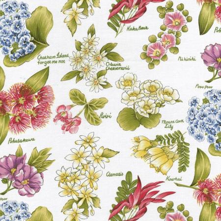 Flowers of Aotearoa NT73869101