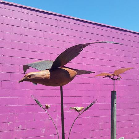 Flying Tui