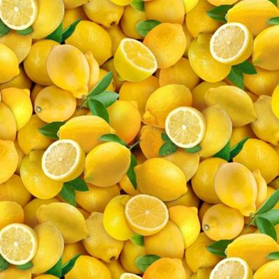 Food Festival - Lemons