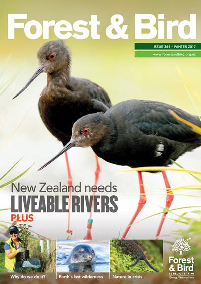 Forest & Bird Magazine
