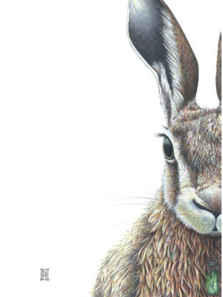 Forest Hare Card & Print