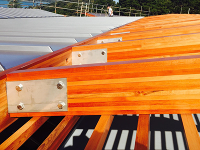 Foreverbeech™ Structural Quality Laminated Beams