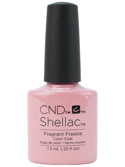 Fragrant Freesia