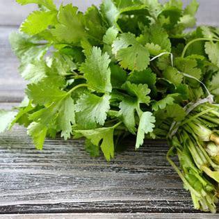 Fresh Organic or Spray Free Herbs