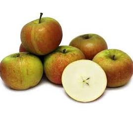 FRESH PRODUCE - Organic & Sprayfree