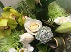 Fresh White, Cream, Green Toned Bouquets & Posies