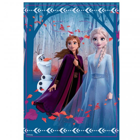 Frozen 2 lootbags - pack of 8.