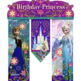 Frozen Drop Down Birthday banner