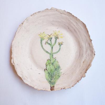 Fynbos Plate