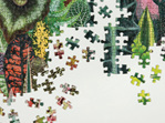 Galison 1054 Piece Jigsaw Puzzle: House Plant Jungle buy at www.puzzlesnz.co.nz