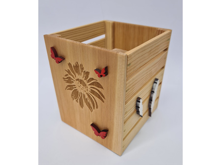 Geo Laser Plantar Box Butterfly/Feather