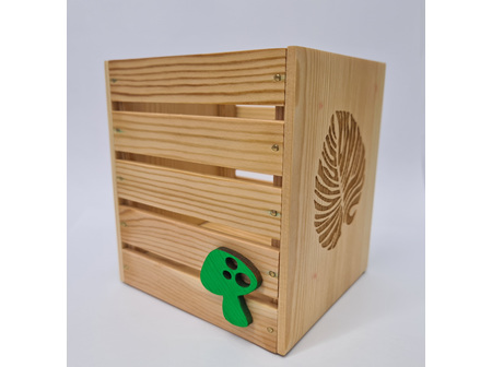 Geo Laser Plantar Box Mushroom