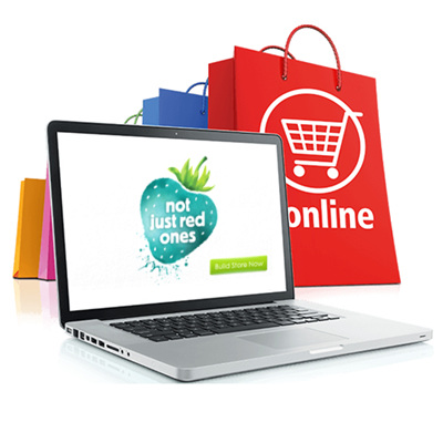 Get Your Own E-Commerce Website
