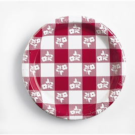 Gingham Red and White Dinner  Plates x 8