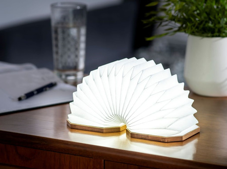 Gingko Smart LED Lights