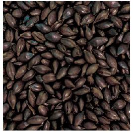 Gladfield Chocolate  Dark