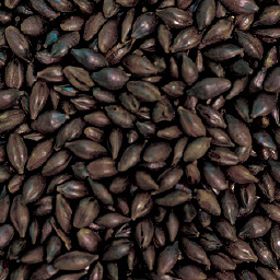 Gladfield Roasted Barley