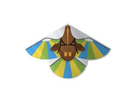 Glenn Jones Kiwi Kite