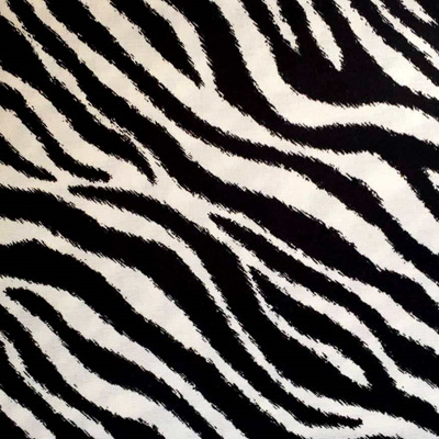 Go Wild - Zebra