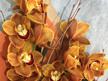 Gold bronze cymbidium Orchids from Flowerise