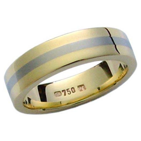 Gold Titanium Ring