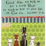 Good Dogs - Sympathy Card