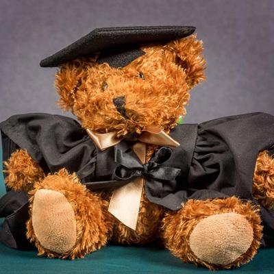 Graduation Bear