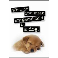 Grandchild Fridge Magnet