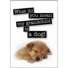 Grandchild Fridge Magnet