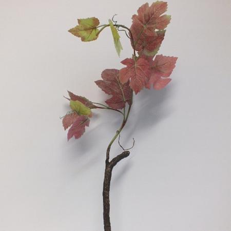 Grape Bush 1215