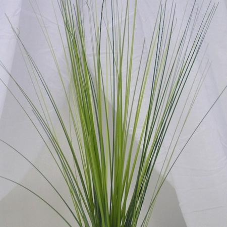 Grass Bush 4387