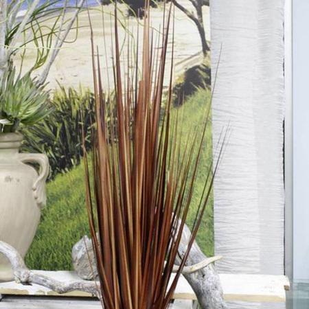 Grass Carex Bronze 4396