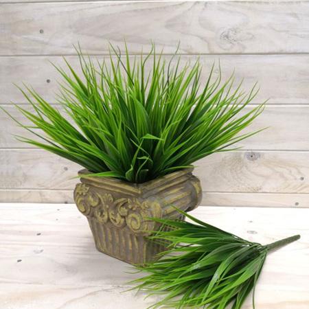 Grass vanilla bush 4119