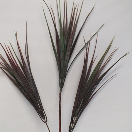Grass vanilla stem 1200
