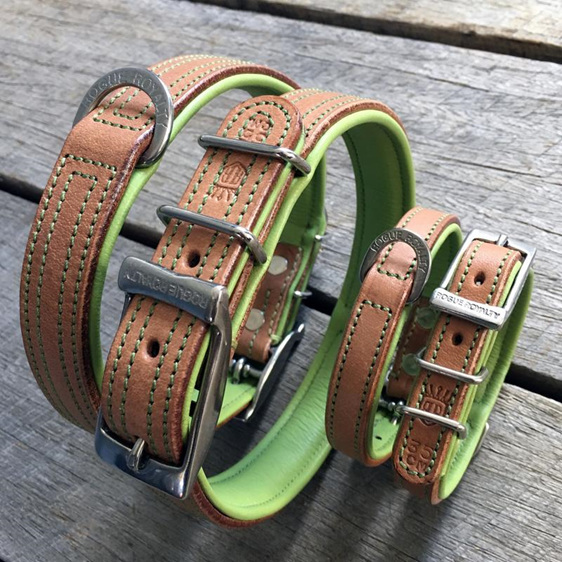 Green and Tan Leather Dog Collar by Rogue Royalty