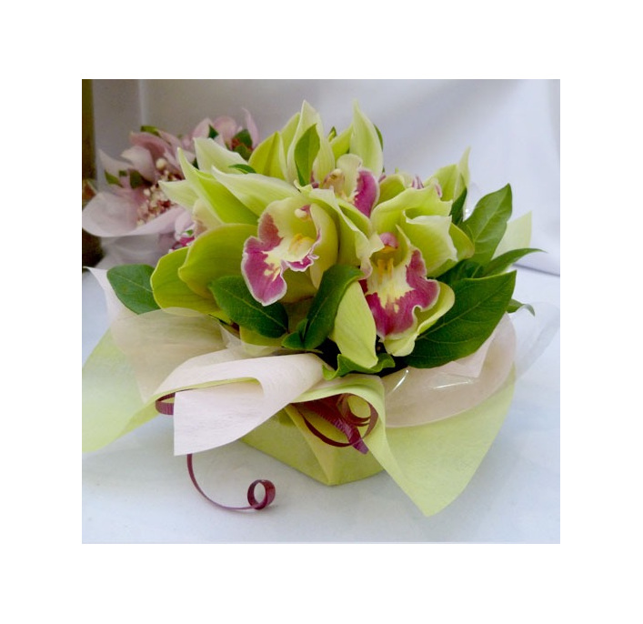 green tones orchid bowl