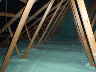 GreenStuf Ceiling Insulation