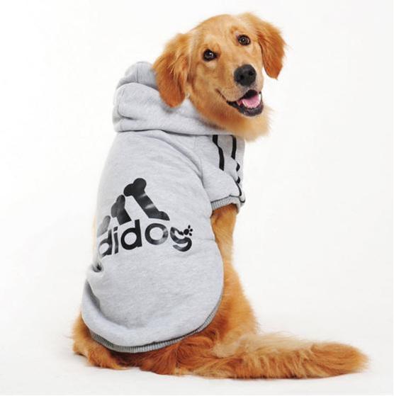 grey adidog hoodie