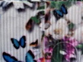 Grosgrain Ribbon x 3 Metres Butterflies, Birds and Flowers