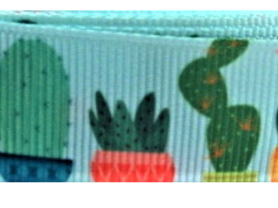 Grosgrain Ribbon x 3 Metres Cactus