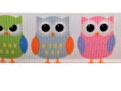 Grosgrain Ribbon x 3 Metres Colourful Owls