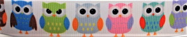 Grosgrain Ribbon x 3 Metres Colourful Owls