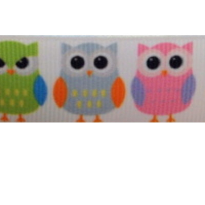Grosgrain Ribbon x 3 Metres - Colourful Owls