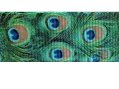 Grosgrain Ribbon x 3 Metres Green Peacock Feathers