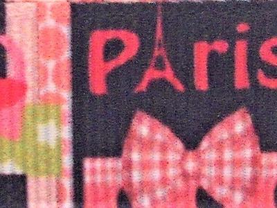 Grosgrain Ribbon x 3 Metres Paris in Pink