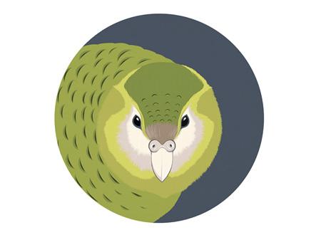 Hansby Design Kakapo Grey Art Spot Medium 300mm Diameter