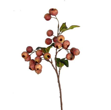 Hawthorn Berry Dusty Plum 4564