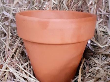 Hay Pot