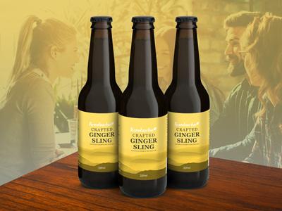 HBB Kombucha Ginger Flavour 12 Pack