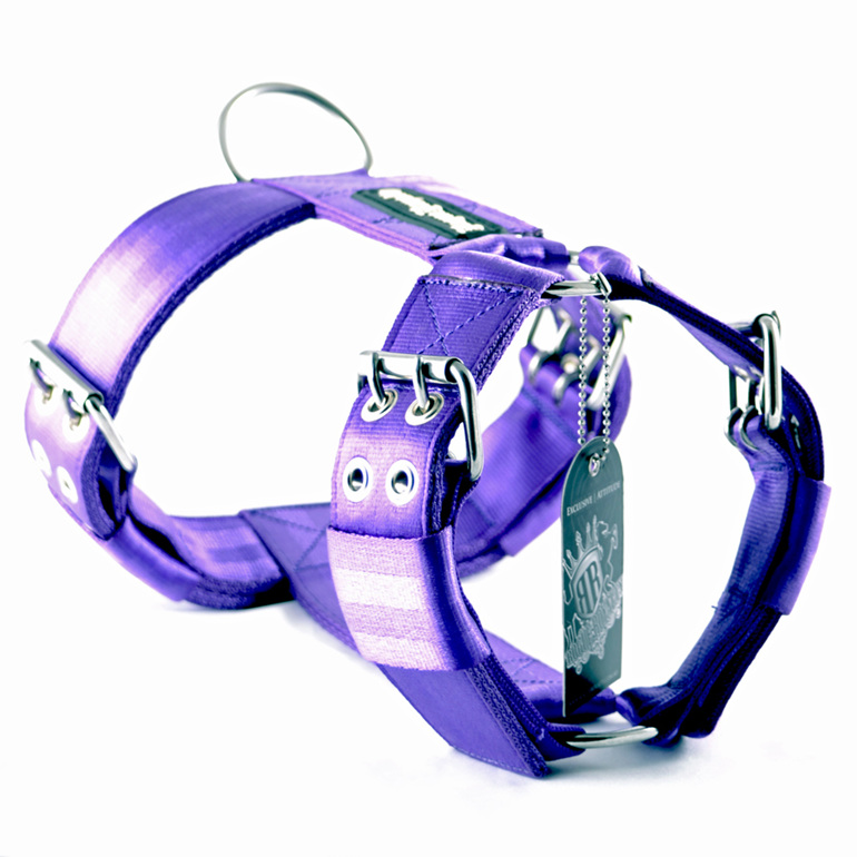 Heavy Duty Purple Nylon Dog Harness by Rogue Royalty